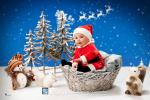 navidad 2015_polanco fotografos-6